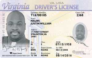 Virginia Driver's License, 21 and over
